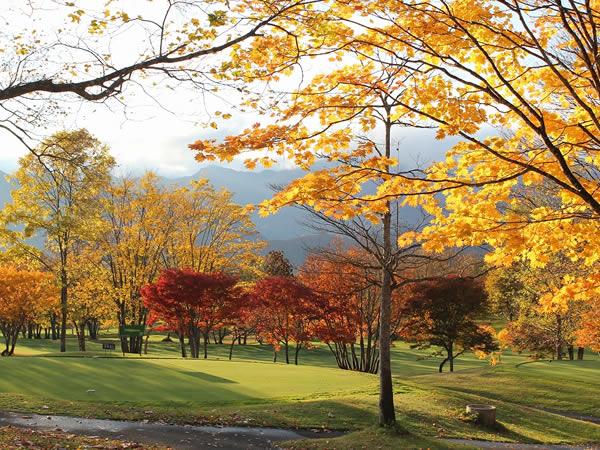 秋を楽しめるゴルフ場