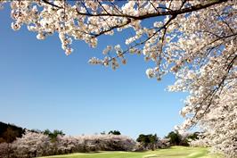 武蔵丘ゴルフコース(埼玉県)
