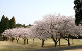 木更津ゴルフクラブ(千葉県)