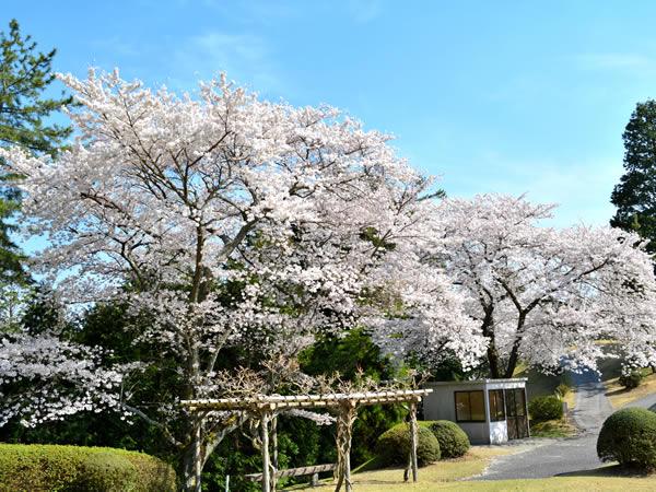 額田ゴルフ倶楽部(愛知県)