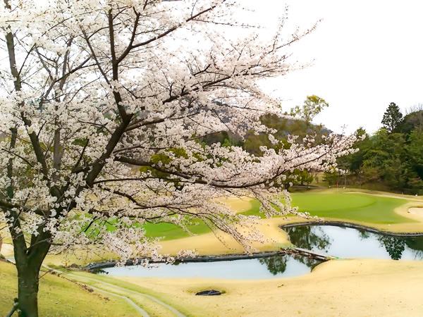 新大阪ゴルフクラブ(大阪府)
