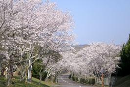 赤坂レイクサイドカントリークラブ(岡山県)
