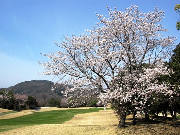 後楽ゴルフ倶楽部(岡山県)