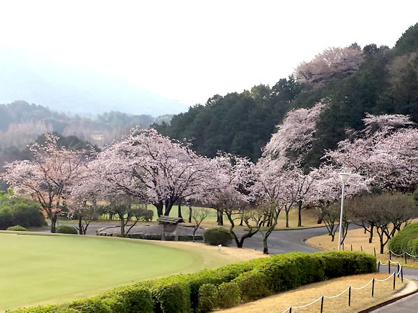 太宰府ゴルフ倶楽部(福岡県)