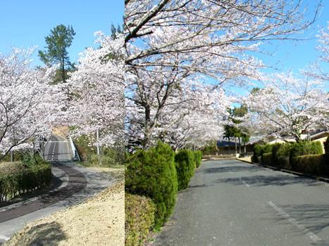 北方ゴルフクラブ(宮崎県)
