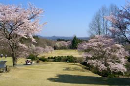 カバヤゴルフクラブ(茨城県)