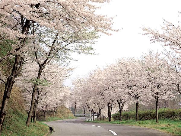 大平台カントリークラブ(栃木県)