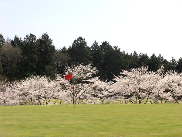 思い川ゴルフ倶楽部(栃木県)