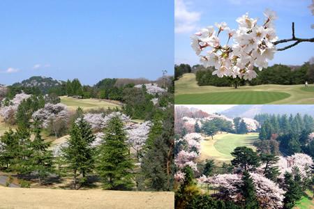 皐月ゴルフ倶楽部 鹿沼コース(栃木県)