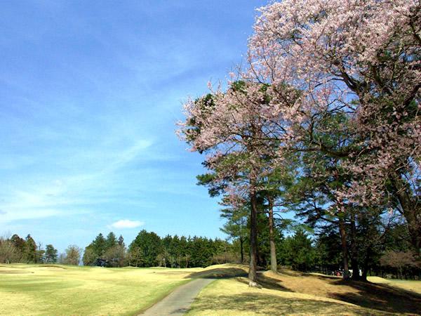 アイランドゴルフパーク東那須(栃木県)