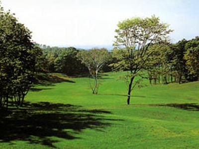 エムズゴルフクラブの写真