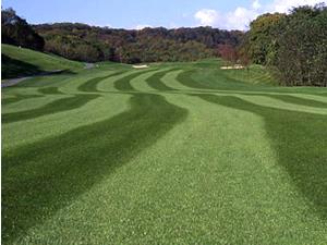 ドリーム苫小牧ゴルフ倶楽部の写真