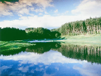 新札幌ワシントンゴルフ倶楽部の写真