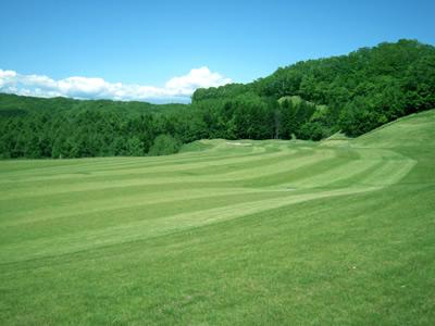 ビッグスギゴルフ倶楽部の写真