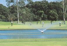 大麻生ゴルフ場の写真