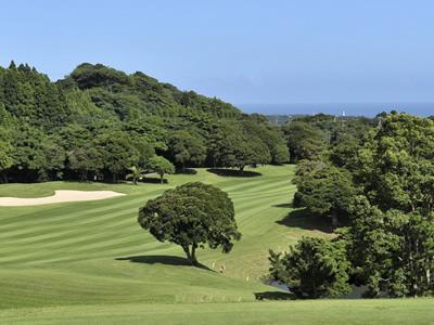勝浦東急ゴルフコースの写真