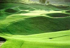 きみさらずゴルフリンクスの写真