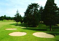 千葉新日本ゴルフ倶楽部の写真