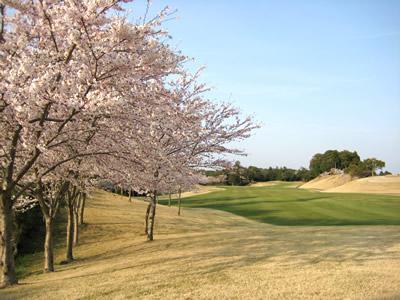千葉桜の里ゴルフクラブ...