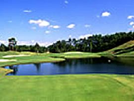 ゴルフクラブツインフィールズの写真