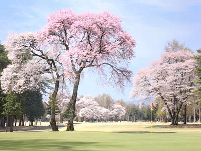 信州伊那国際ゴルフクラブ