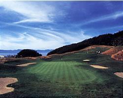 夏泊ゴルフリンクスの写真