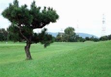 牧野パークゴルフ場の写真