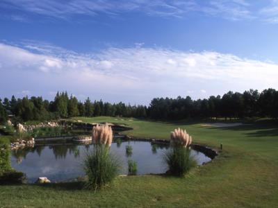 六甲国際ゴルフ倶楽部の写真