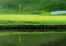 パインツリーゴルフクラブの写真