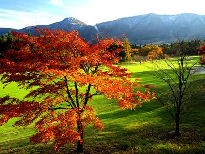 リゾートパーク<br />オニコウベゴルフクラブの写真