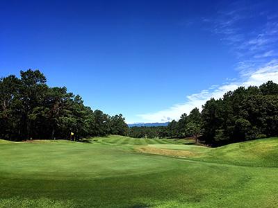 宮崎国際ゴルフ倶楽部の写真