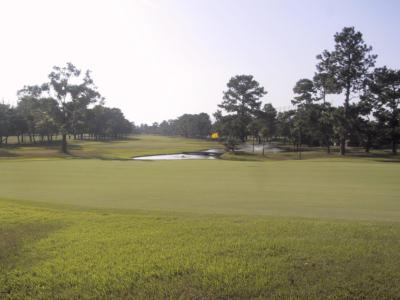 出水ゴルフクラブの写真