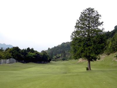 西条ゴルフ倶楽部の写真