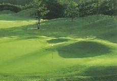 ザ・ダイナミックゴルフ倶楽部の写真