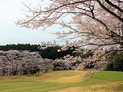 桜の宮ゴルフ倶楽部の写真