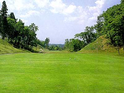 マナゴルフクラブ