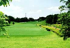 アローエース<br />ゴルフクラブの写真