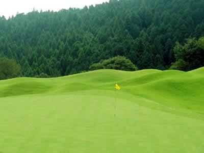 パインズ日光ゴルフ倶楽部(旧ウイングフィールドGC)(閉鎖)