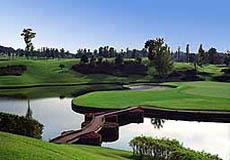 大金ゴルフ倶楽部の写真