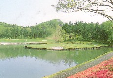 ピートダイゴルフクラブ VIPコース