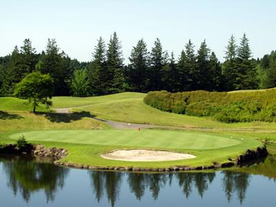 ピートダイゴルフクラブ<br />ロイヤルコースの写真