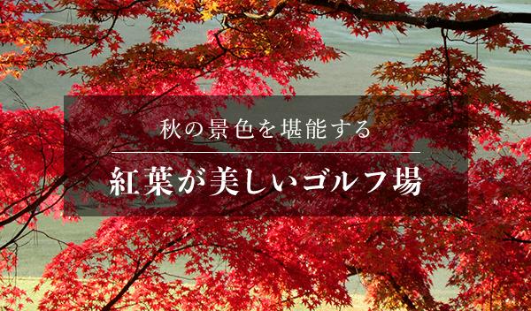 紅葉が美しいゴルフ場特集