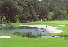 新武蔵丘ゴルフコース...