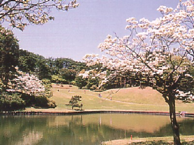桜ヶ丘カントリークラブ