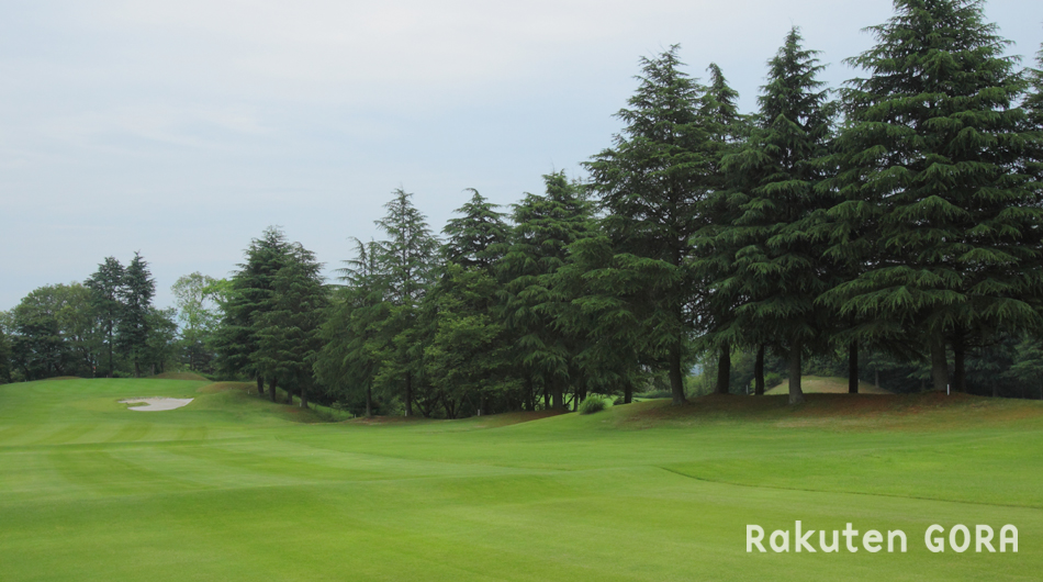 大阪パブリックゴルフ場 写真