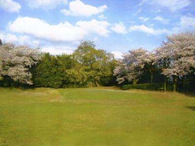 根来ゴルフクラブ(9H Par62)
