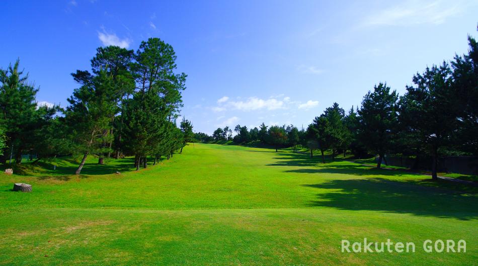 南国カンツリークラブ 吉野コース サムネイル写真3