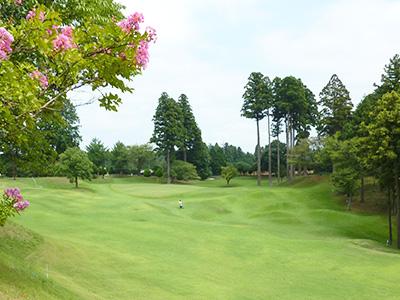 ダイナミックゴルフ成田(ショートコース)