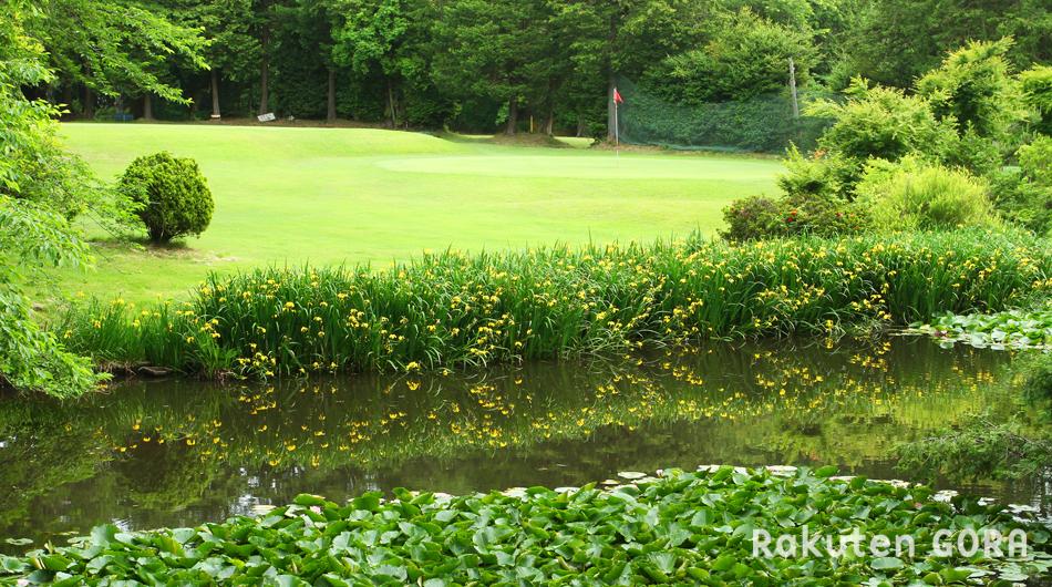 白井ゴルフ林間ショートコース 写真