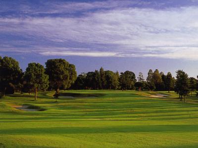 セントラルゴルフクラブ...